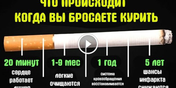 Когда бросаешь курить что происходит с потенцией